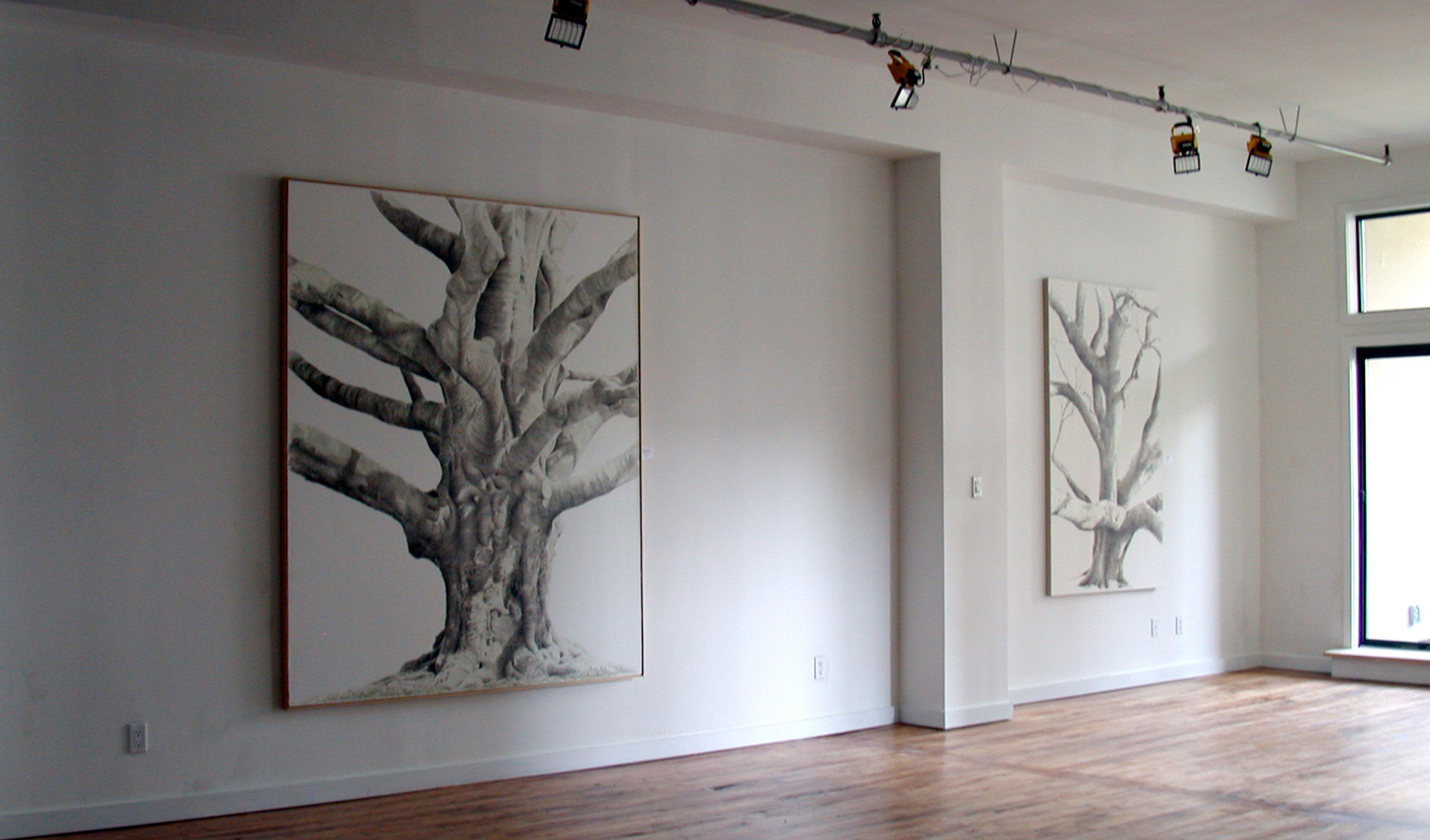 GREAT COPPER BEACH and GUMBO LIMBO, 2009, Gallery, Brooklyn NY